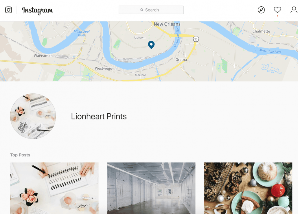 instagram business profile lionheart prints