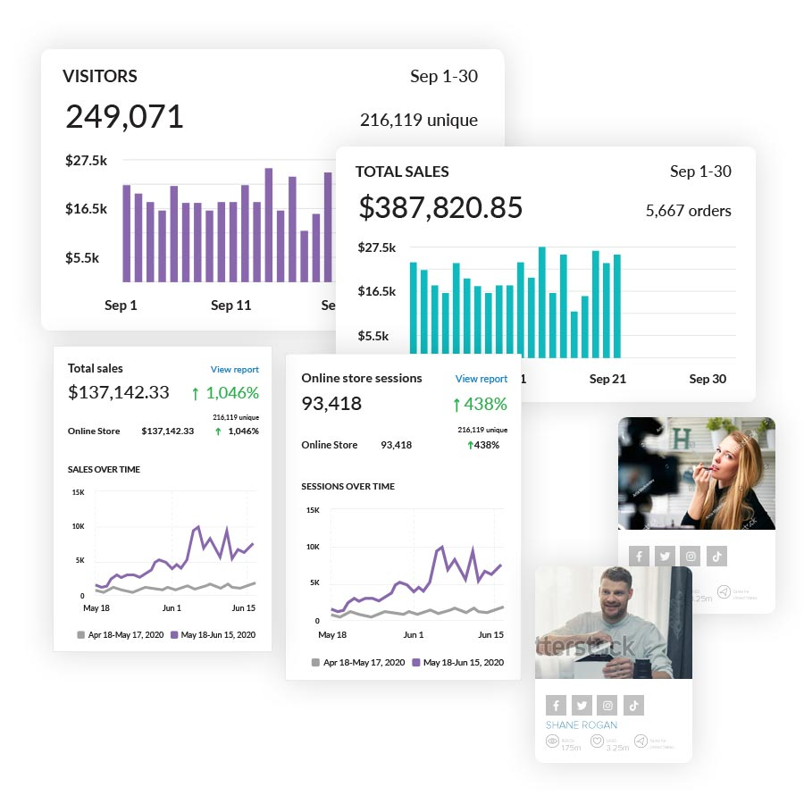 Graphic showing Shopify analytics dashboard information on sales and visits per month